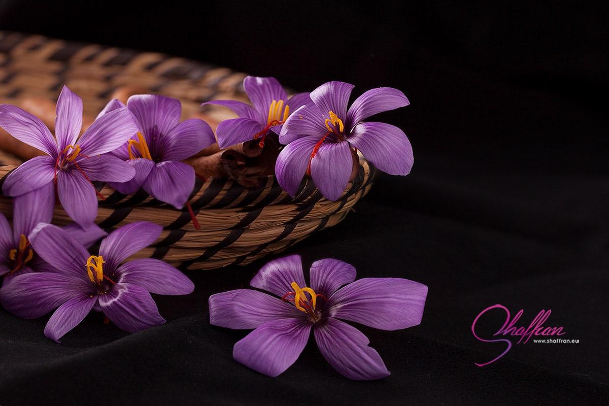 рекламна фотография на шафран