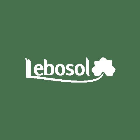 Лебозол България
