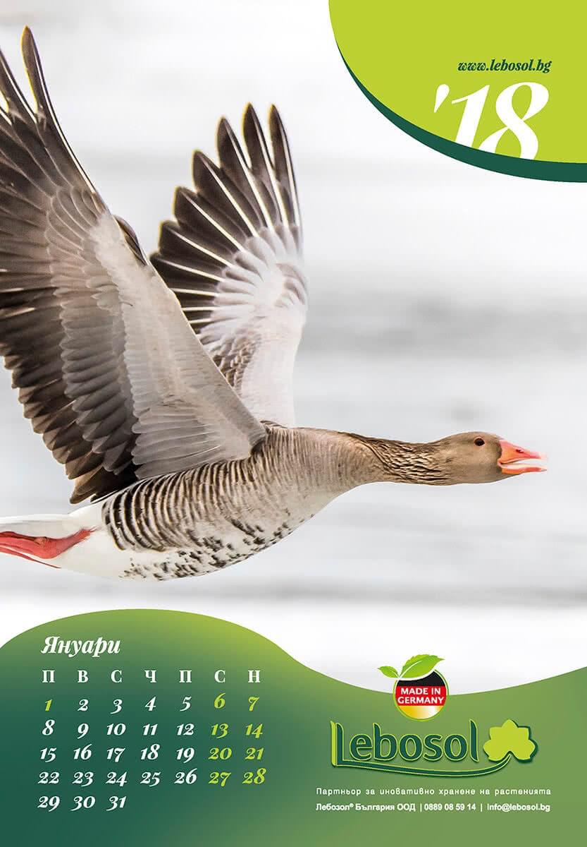 дизайн и печат на дванадесет листов календар за лов